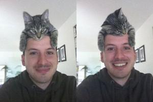 【画像あり】『ネコは人間を大きいネコと思っている』という説はきっと誤り